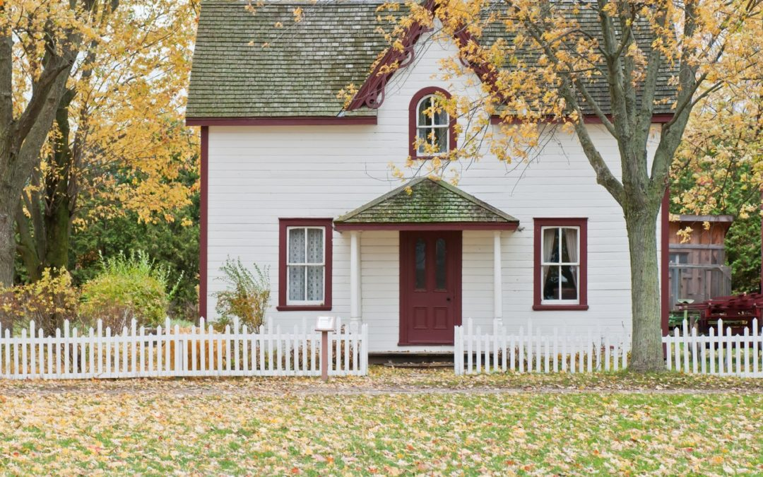 10th Circuit Dismisses Homeowners Claims of Increased Insurance Premiums | Photo by Scott Webb from Pexels
